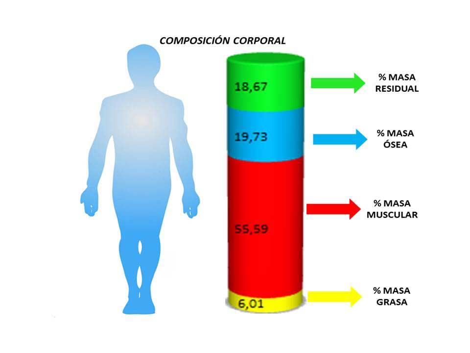 tnicaantropometria1